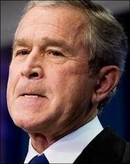 LNW_Bush.grimace
